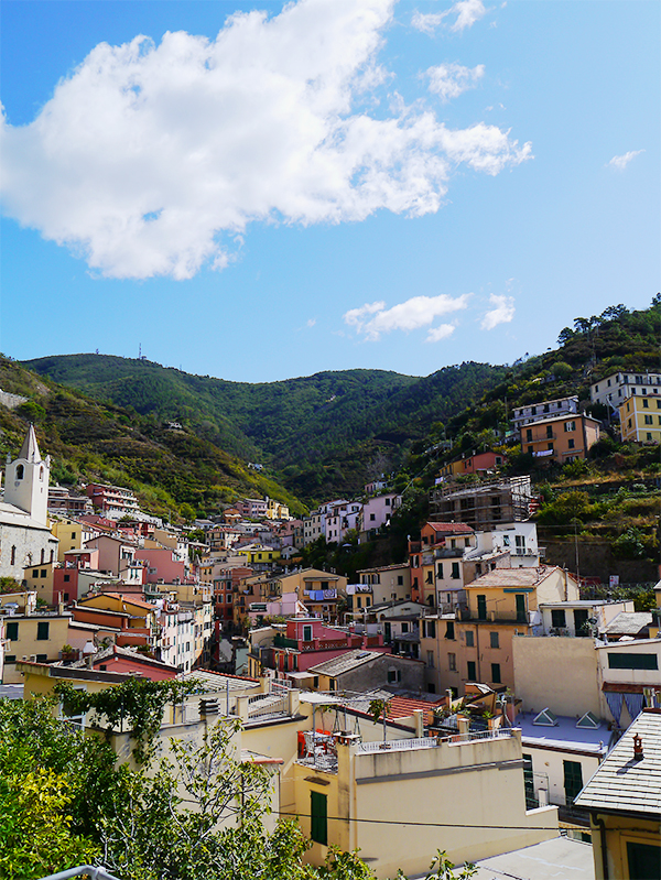 Colourful houses nestled in the green hills of Riomaggiore, Cinque Terre, Italy