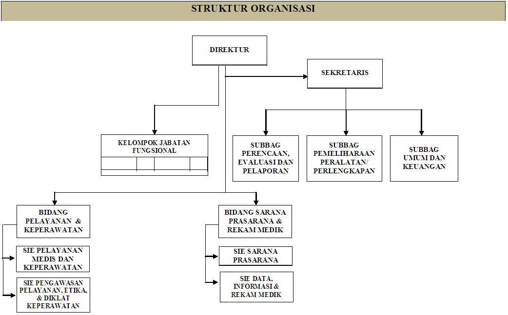 Struktur Organisasi  Rumah Sakit Umum Daerah Salak