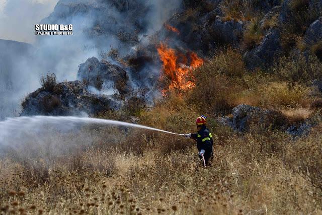Η άμεση κινητοποίηση της πυροσβεστικής για πυρκαγιά στο Ναύπλιο απέτρεψε τα χειρότερα