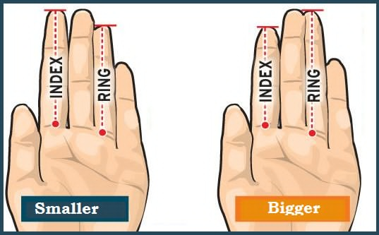 THE LENGTH OF HIS FINGERS CAN SAY THE SIZE OF HIS PRIVATE PART ! READ AND FIND OUT?