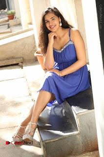 Actress Prasanna Stills in Blue Short Dress at Inkenti Nuvve Cheppu Movie Platinum Disc Function  0184.JPG
