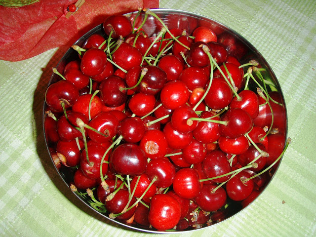 fresh cherries fruit photo