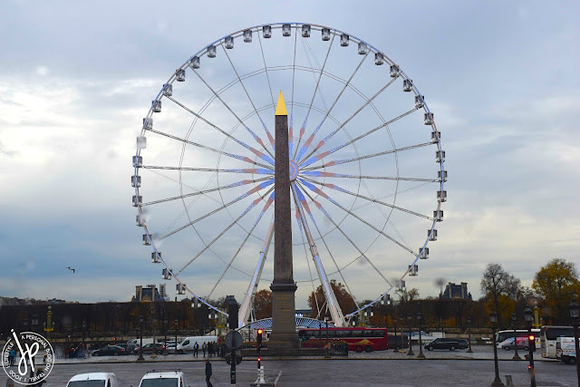 ferris wheel and obelisk