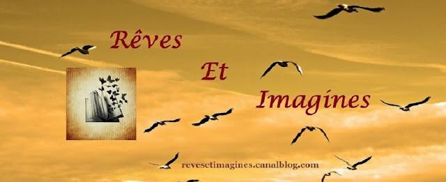 http://eneltismae.blogspot.com/2016/05/chronique-on-ma-dit-reves-et-imagines.html