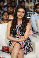 Kyra Dutta in a Deep neck Small Dress at Shamanthakamani pre release function ~  Exclusive 049.JPG