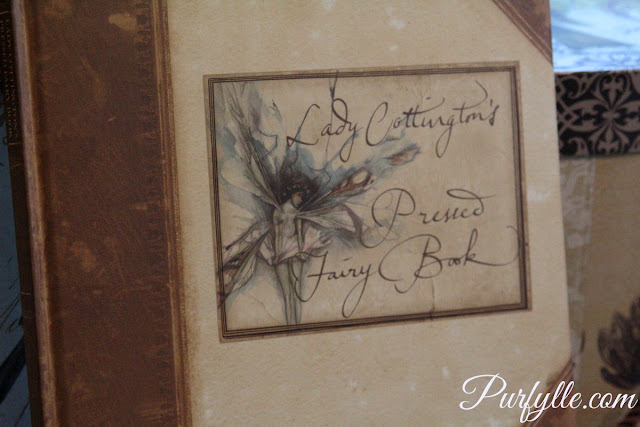 Lady Cottington's Pressed Fairy Book - front cover