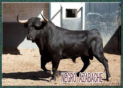 Diferentes razas de toros - Página 3 11156362_750501521733952_413859159403380422_n