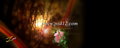 12x30 PSD Karizma Album Backgrounds