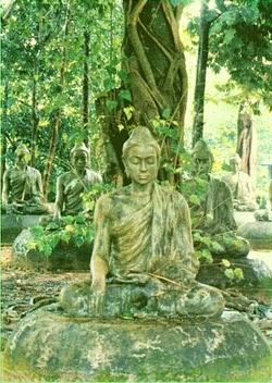 Đạo Phật Nguyên Thủy - Kinh Tương Ưng Bộ - Năm căn ...