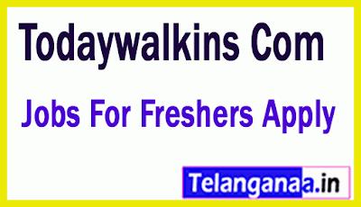 Todaywalkins Com  Recruitment Jobs For Freshers Apply