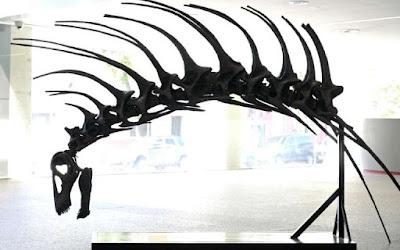 Fosil Dinosaurus Yang Memiliki Duri Di Tulang Punggung Berhasil DiTemukan