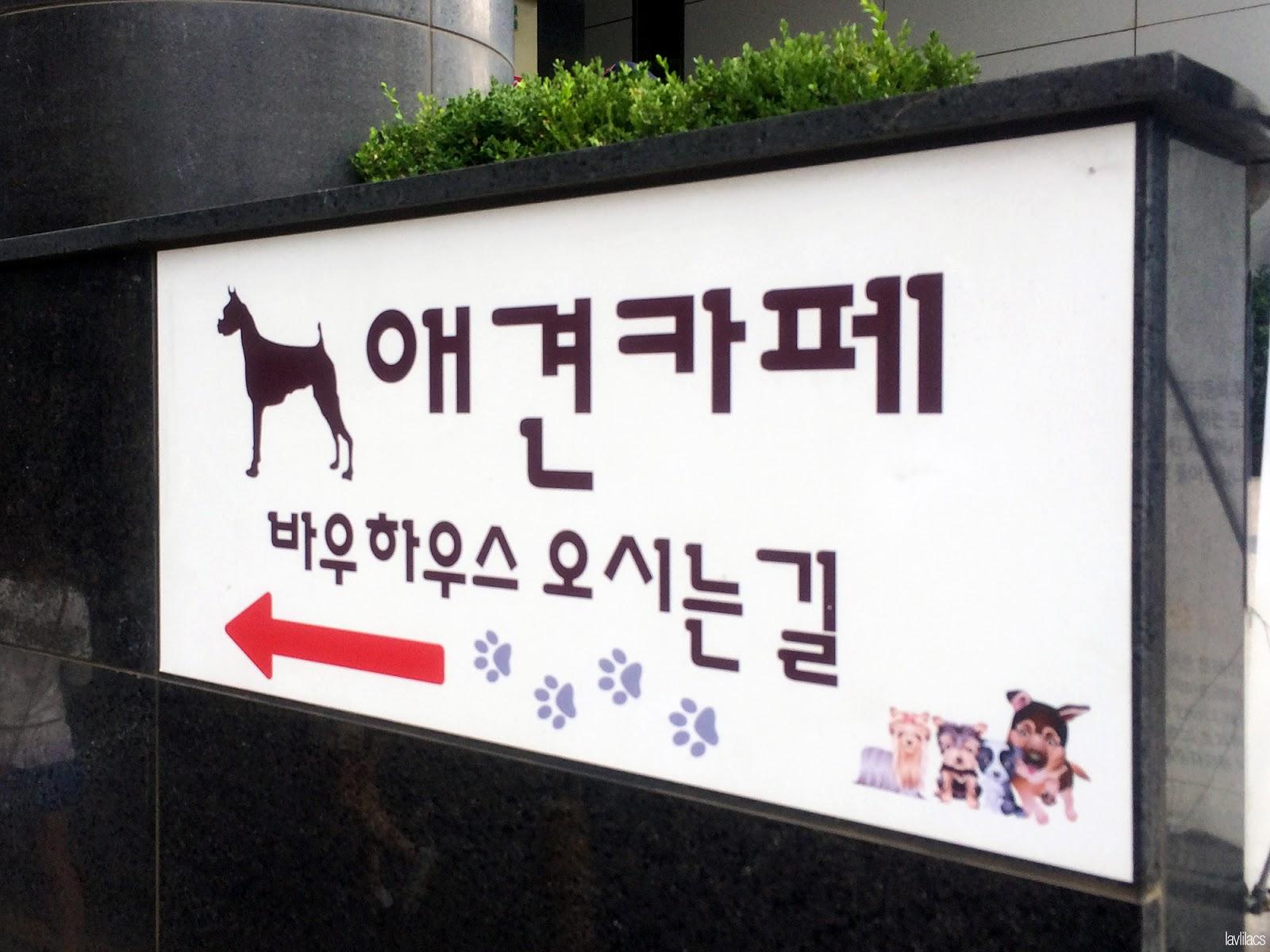 Seoul, Korea - Summer Study Abroad 2014 - Bauhaus Dog Cafe entrance sign