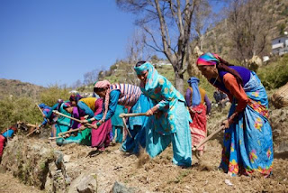 Indian women farmers raking Guelph blog