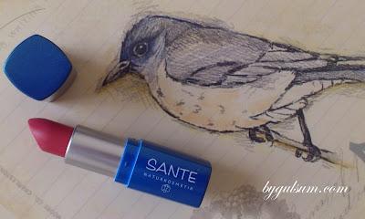 Sante Lipstick No:21