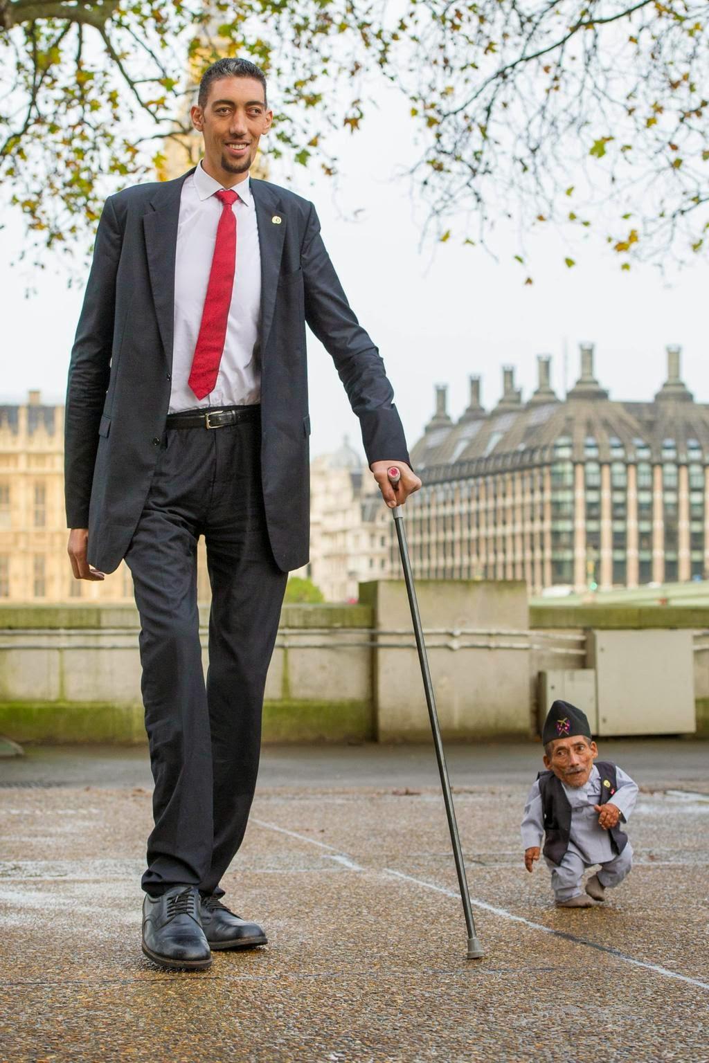 Aww S Tallest Man Amp Shortest Man Meet E Em
