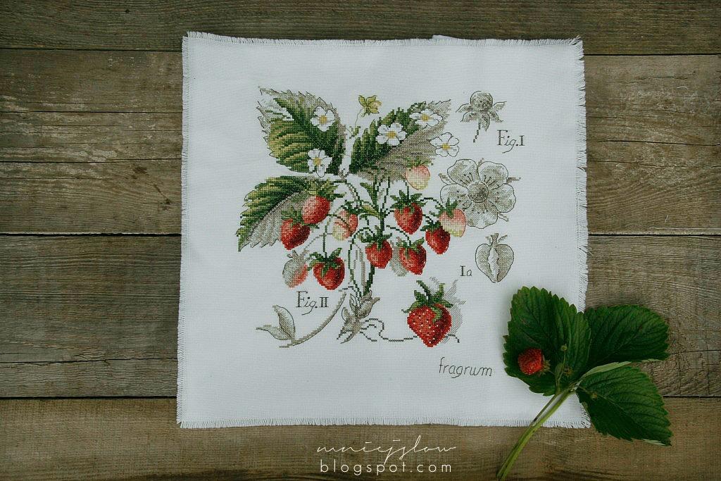 Étude aux fraises - Véronique Enginger