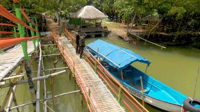 Destinasi Wisata - Pesona Hutan Payau Cilacap Jawa Tengah