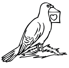 Cute Pigeons Coloring Pages
