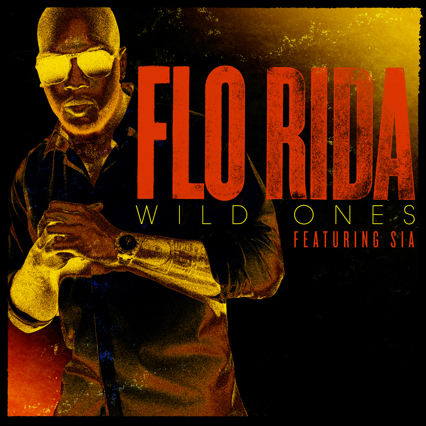 I Am Rider Song Mp3: 01 FLO RIDA WILD ONES 0 Download Music Mp3 For Free