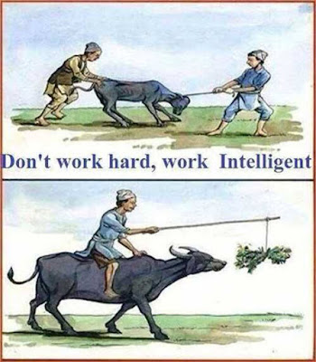 working-smart- is- better- than- working- hard
