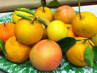 Fairchild Tangerine Fruit Pictures