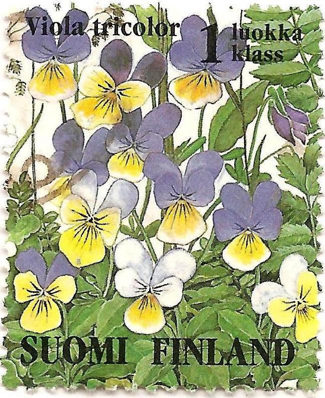 s from finland onko prostituutio laillista suomessa