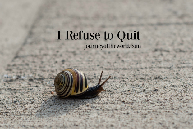 I refuse to quit Bible