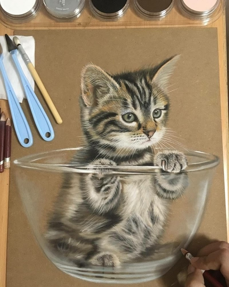 09-Kitty-in-a-Bowl-Ivan-Hoo-Animals-Translated-to-Realistic-Drawings-www-designstack-co