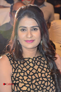 CO Godavari Telugu Movie Audio Launch .COM 0051.jpg
