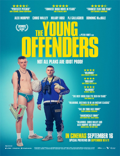 Ver The Young Offenders (2016) Online