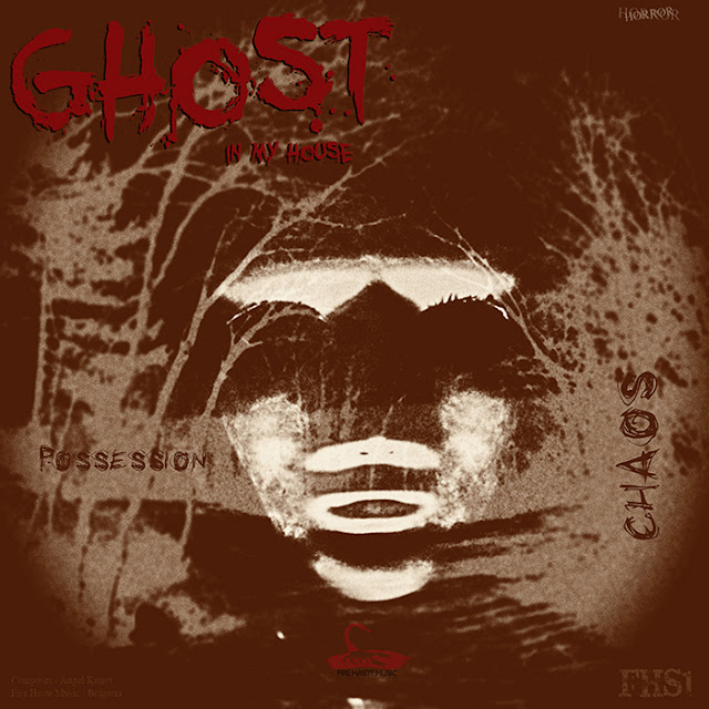 https://firehastemusic.bandcamp.com/track/ghost-in-my-house