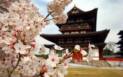Templo en Japón rodeado con flores de cerezo