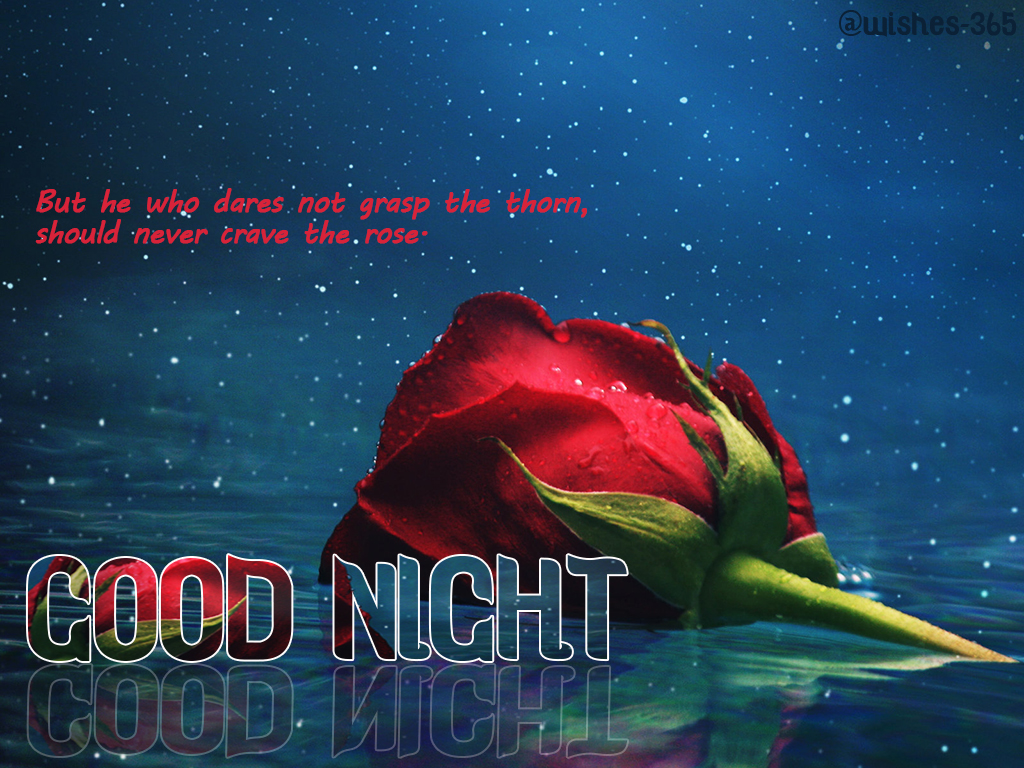Poetry and Worldwide Wishes: Good Night Quotes and Sweet ...