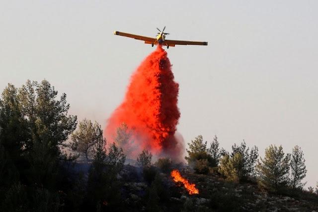Israel Kebakaran Hutan, 60 Ribu Warganya di Evakuasi Petugas