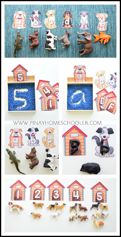 Dogs Breed Letter and Number Cards