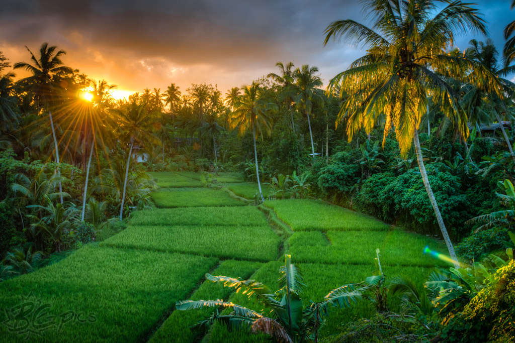 Download 75 Koleksi Background Alam Indonesia Gratis Terbaru Download Background