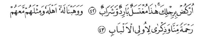 surah shad ayat 42-43