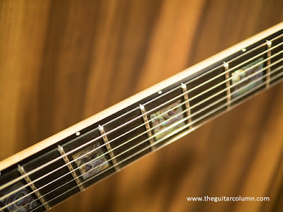 Vader V6X ebony fingerboard and stainless steel frets