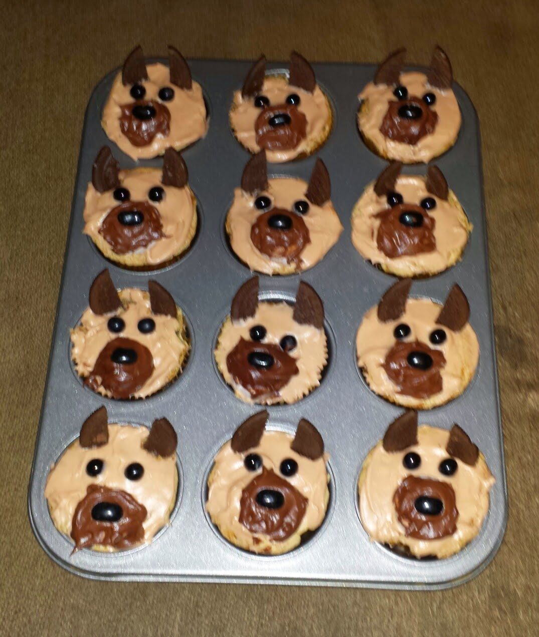 Kelley's Dog Blog: Beach Day And Cupcakes