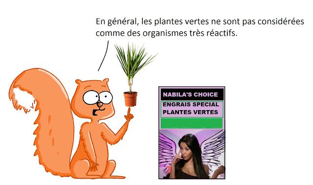 http://kidiscience.cafe-sciences.org/articles/drole-de-plante-mimosa-pudica/