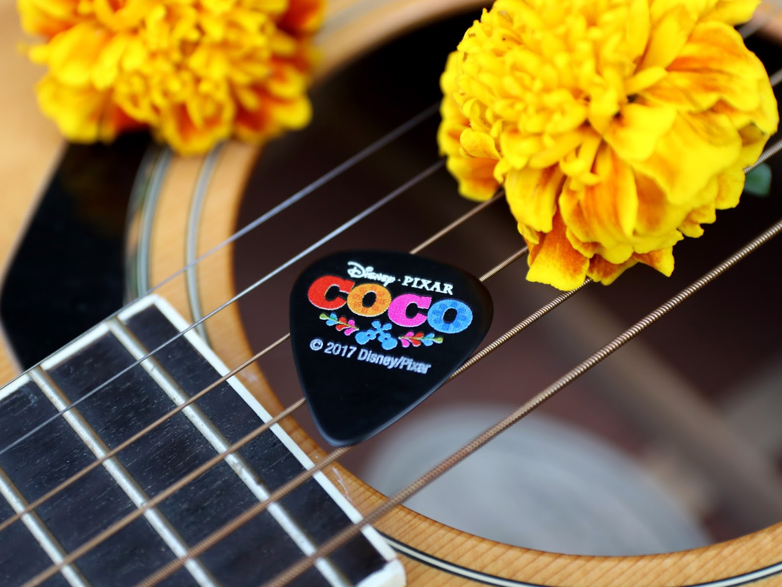 pixar coco guitar pick d23 expo