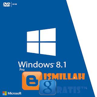 Windows 8.1 Pro Uptodate Juli 2016