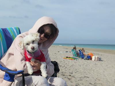 Dog friendly Juno Beach, Florida, Dog friendly Jupiter Beach, Florida, Dog friendly in Florida