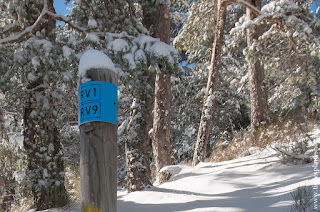 Ruta RV9 sierra de madrid raquetas nieve senderismo