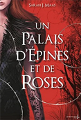 http://elixirdarkane.blogspot.fr/2017/04/avis-lecture-un-palais-depines-et-de.html