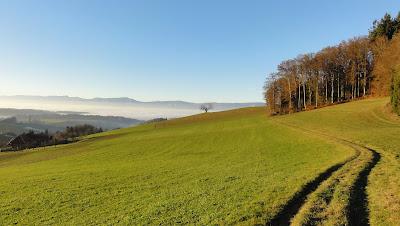 Linden, Abfahrt nach Thörigen
