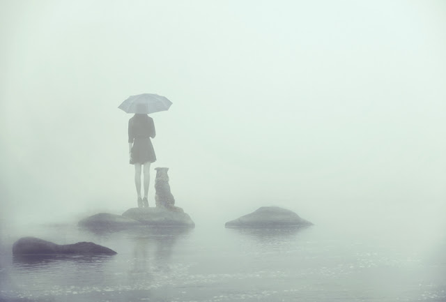 Dog training lessons from the best fiction. Dog trainers need to know the dog's back story, just to the degree that it matters. Illustrated by mysterious photo of woman and dog on an island in the fog