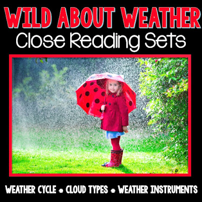 Make your kids WILD about learning with these Wild about Weather ideas on Virginia is for Teachers.