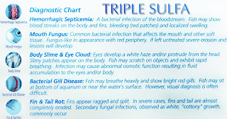 Aquarium Pharmaceuticals Triple Sulfa Diagnostic Chart