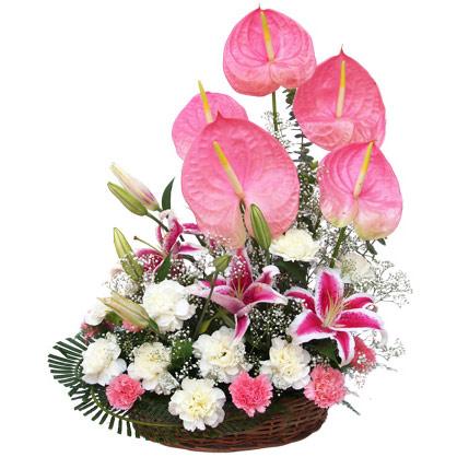 Hoa đẹp 20/11, Những lẵng hoa, giỏ hoa đẹp nhất ngày 20/11